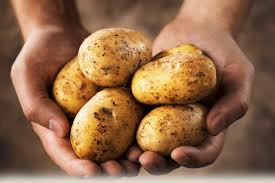 www.potatoes.com